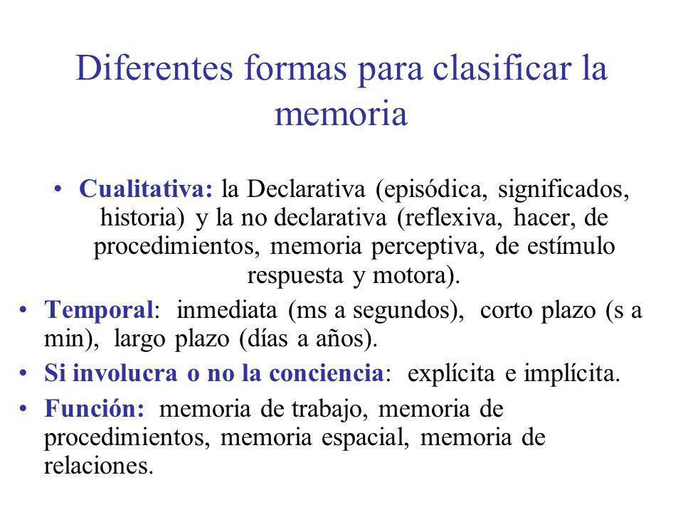 Diferentes formas para clasificar la memoria