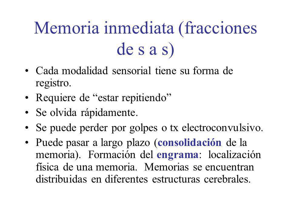 Memoria inmediata (fracciones de s a s)