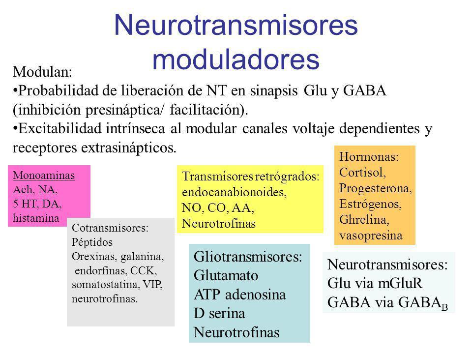 Neurotransmisores moduladores