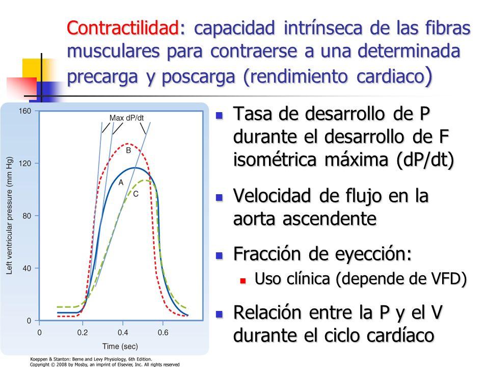 Velocidad de flujo en la aorta ascendente