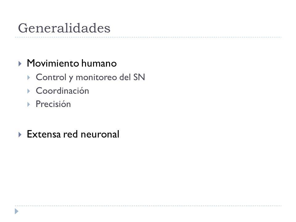 Generalidades Movimiento humano Extensa red neuronal