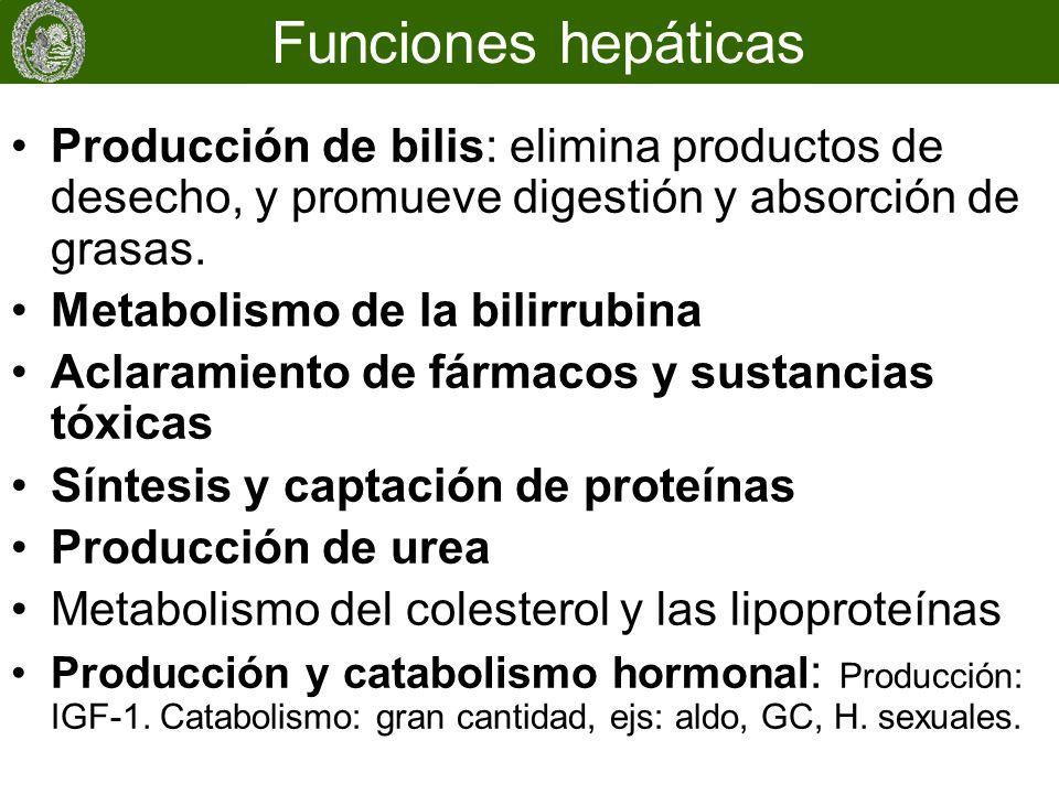 Funciones hepáticas Producción de bilis: elimina productos de desecho, y promueve digestión y absorción de grasas.