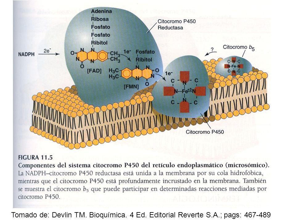 Tomado de: Devlin TM. Bioquímica. 4 Ed. Editorial Reverte S. A