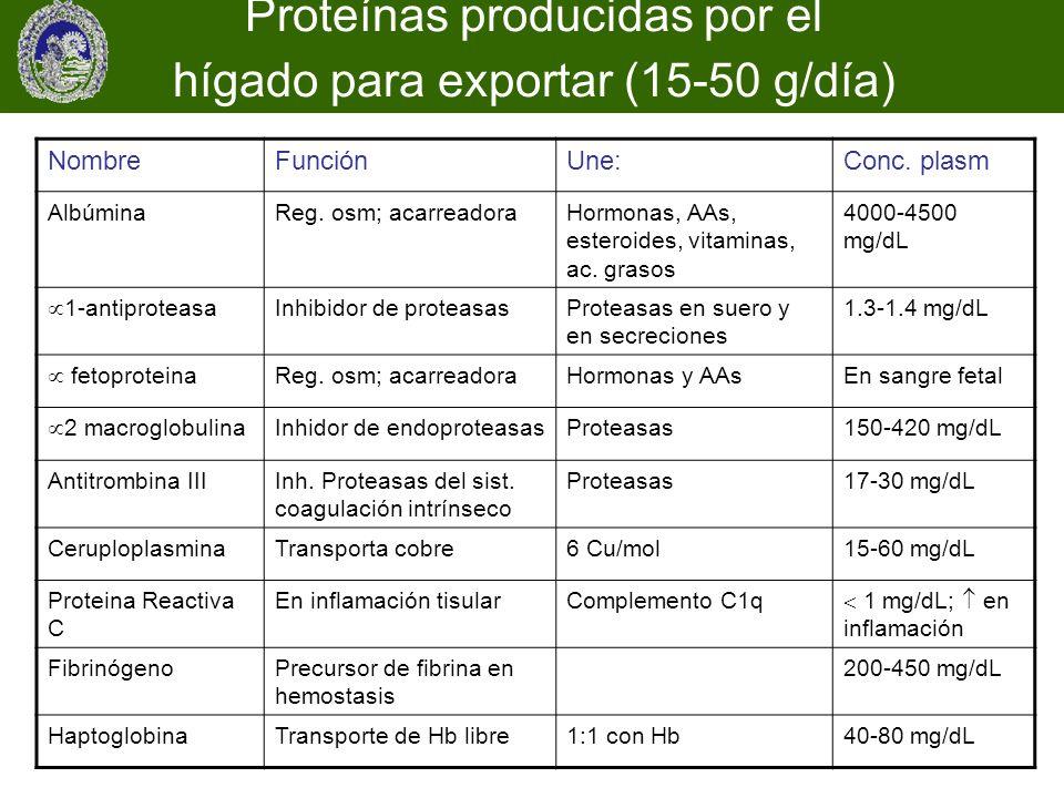 Proteínas producidas por el hígado para exportar (15-50 g/día)
