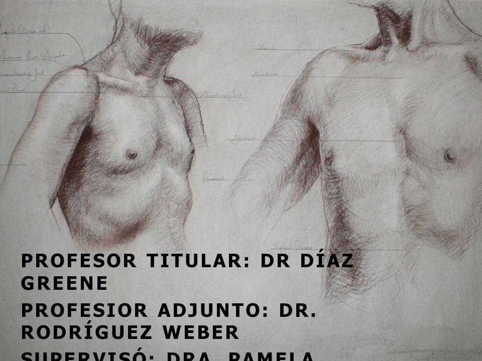 PROFESOR TITULAR: DR DÍAZ GREENE
