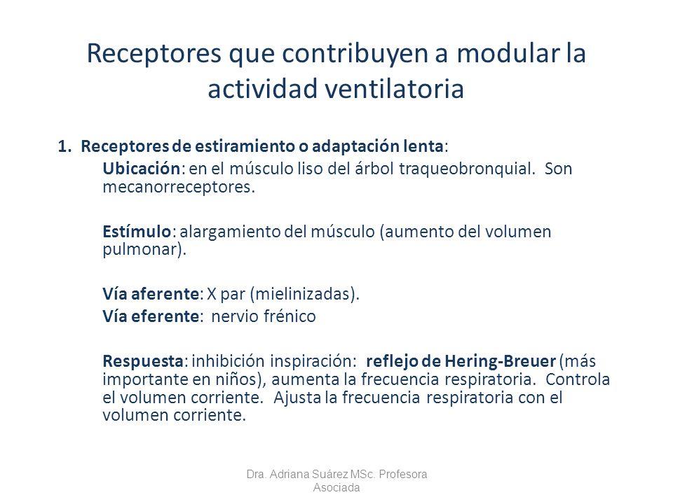 Receptores que contribuyen a modular la actividad ventilatoria