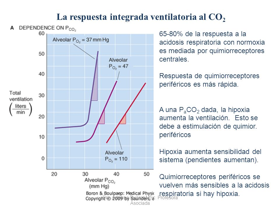 La respuesta integrada ventilatoria al CO2