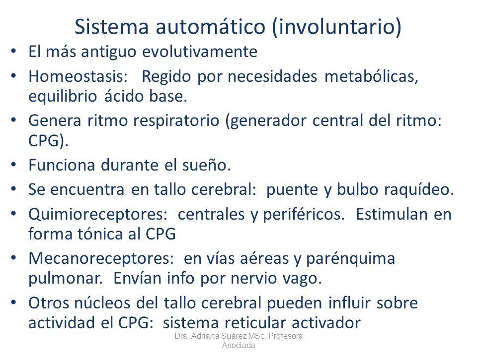 Sistema automático (involuntario)