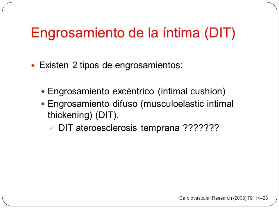 Engrosamiento de la íntima (DIT)