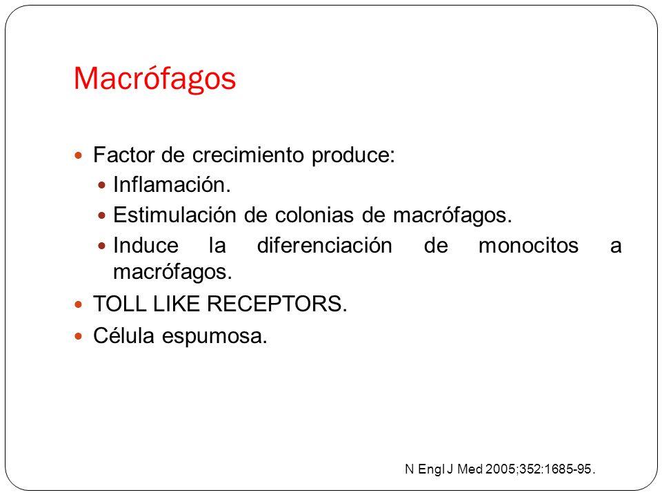 Macrófagos Factor de crecimiento produce: Inflamación.