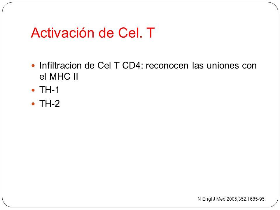 Activación de Cel. T Infiltracion de Cel T CD4: reconocen las uniones con el MHC II. TH-1. TH-2.