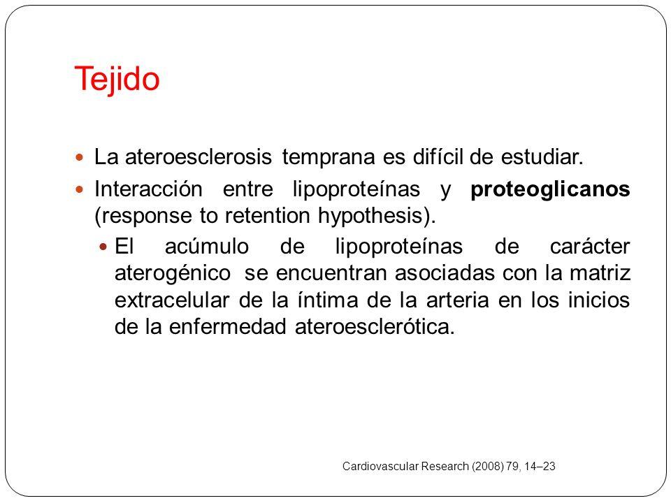 Tejido La ateroesclerosis temprana es difícil de estudiar.