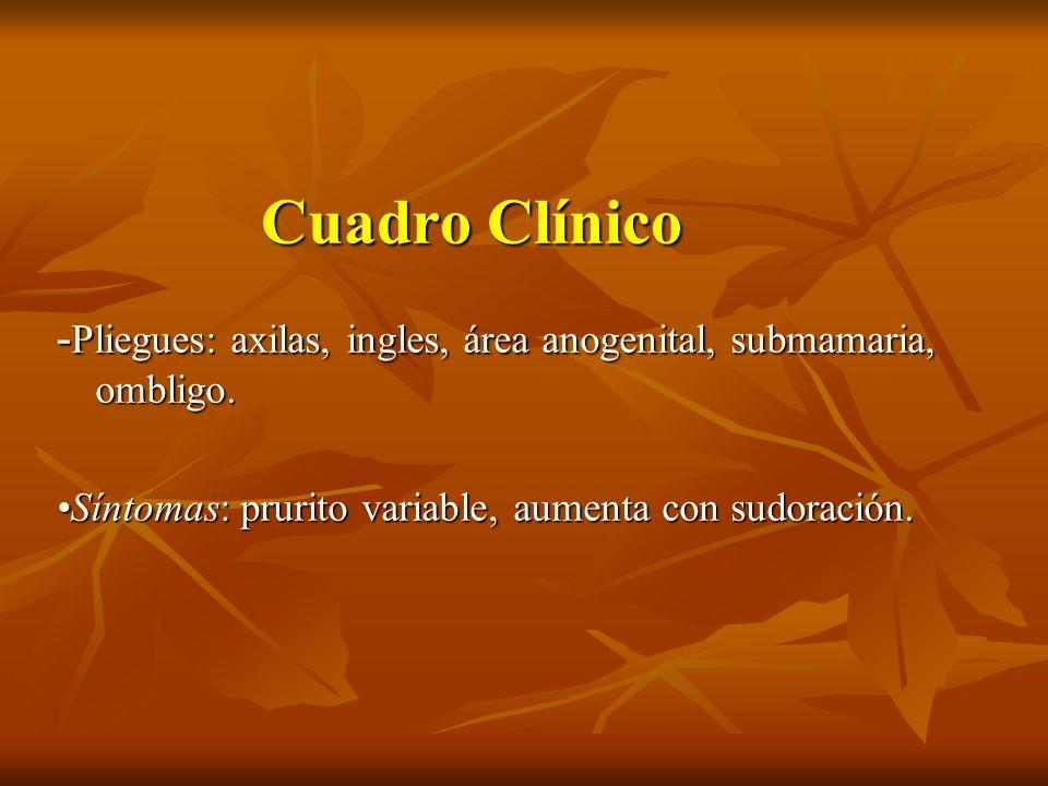 Cuadro Clínico -Pliegues: axilas, ingles, área anogenital, submamaria, ombligo.