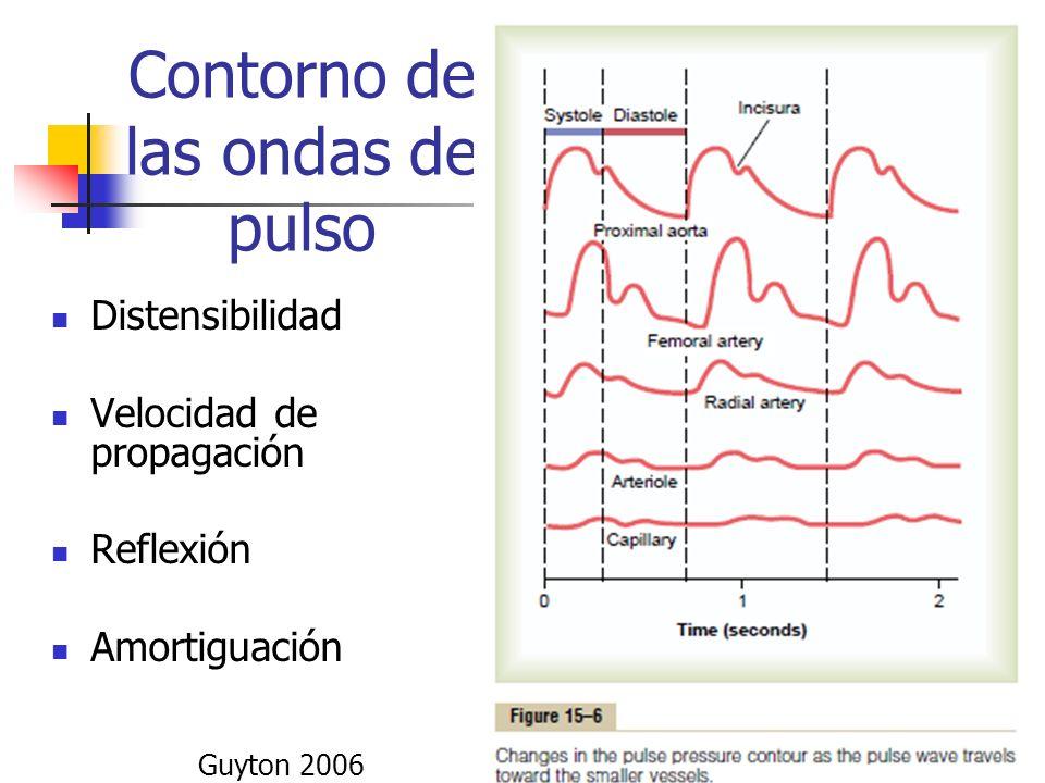 Contorno de las ondas de pulso
