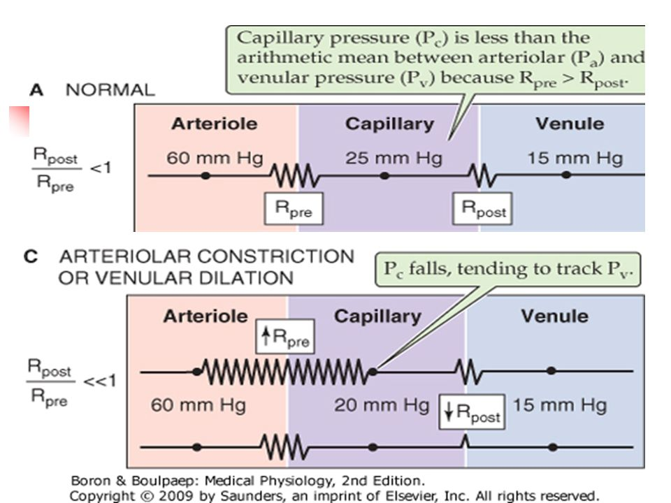 P capilar depende de:Se dijo que delta P depende de la R entre dos puntos (corriente arriba y corriente abajo)