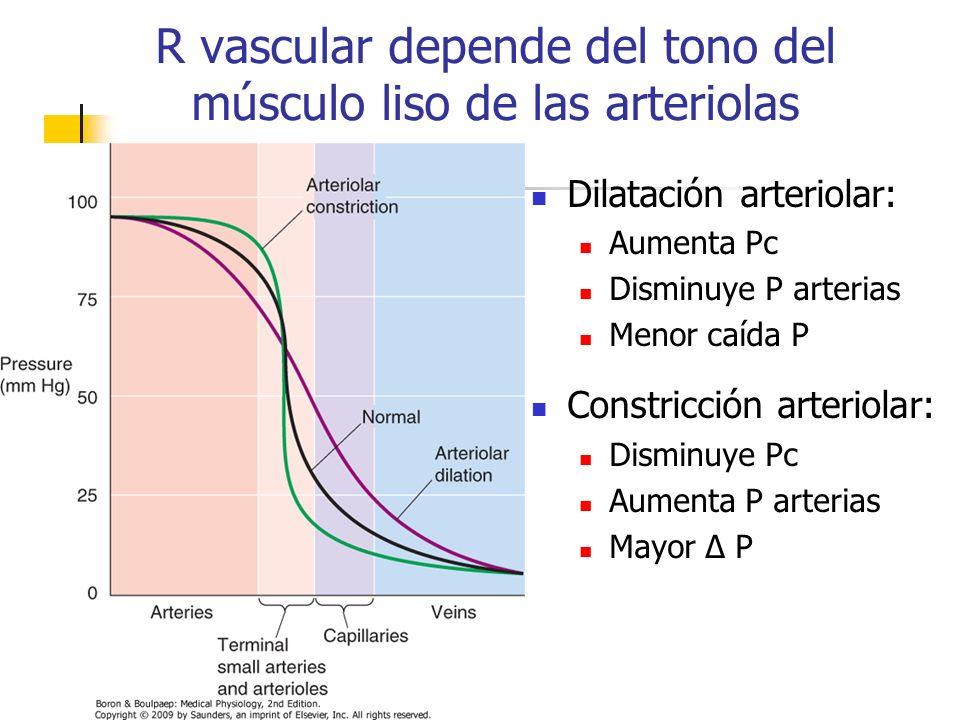 R vascular depende del tono del músculo liso de las arteriolas