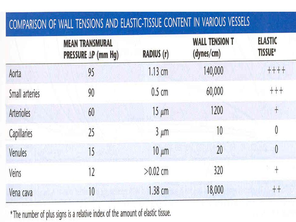 La cantidad de tejido elástico correlaciona muy bien con T y mal con la P transmural