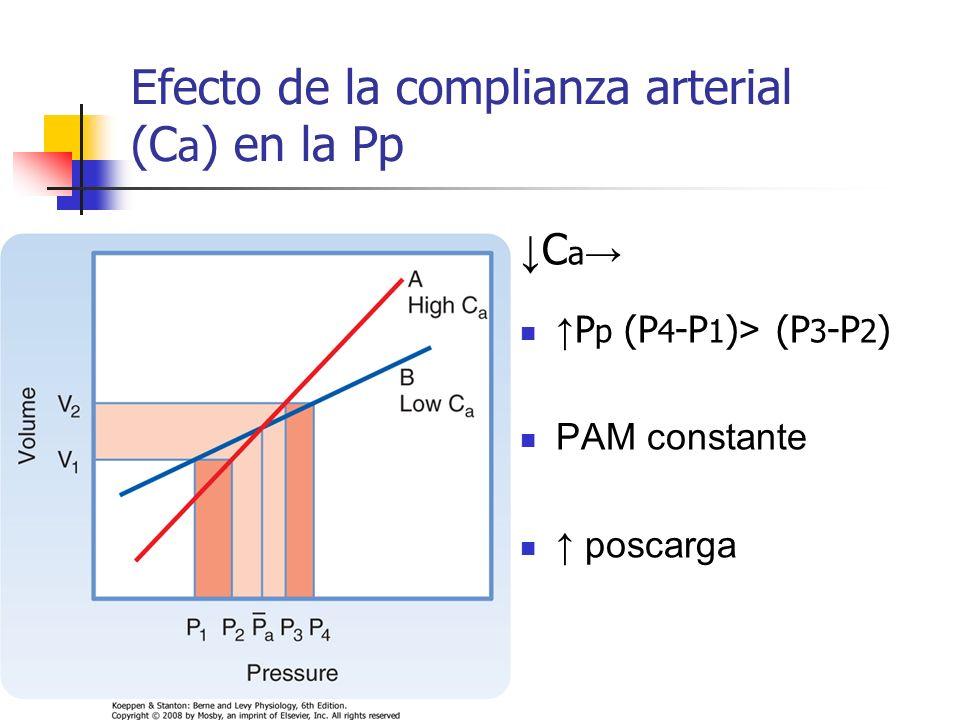 Efecto de la complianza arterial (Ca) en la Pp