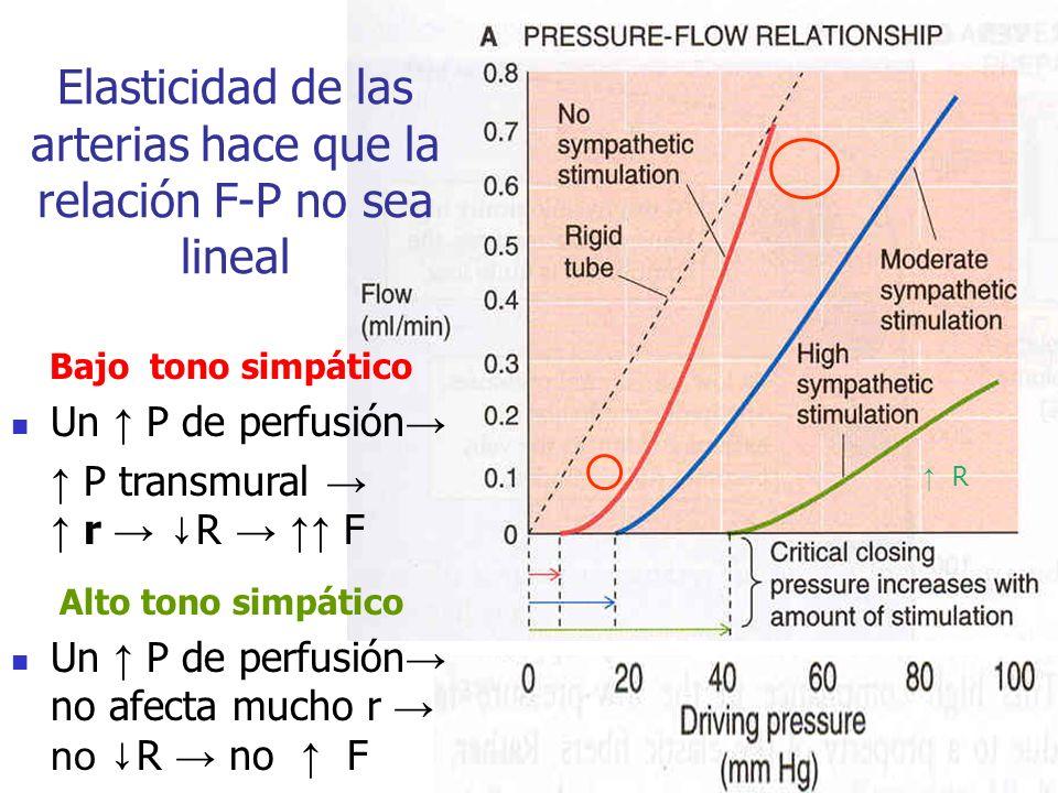 Elasticidad de las arterias hace que la relación F-P no sea lineal