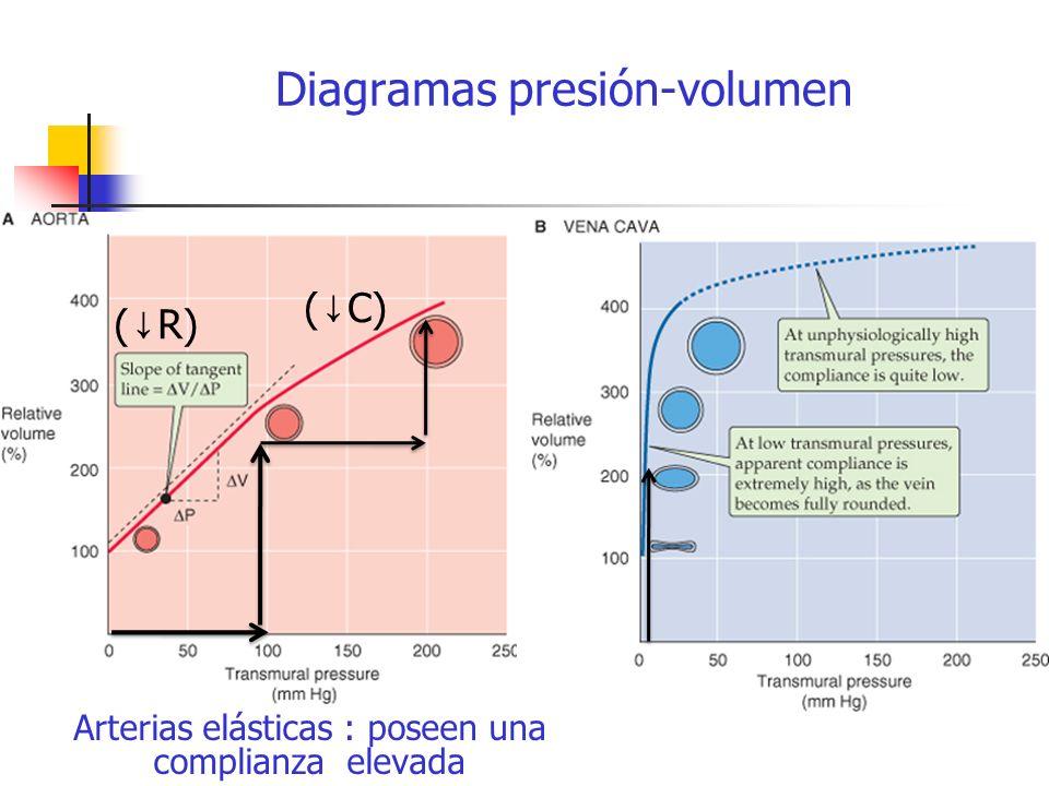 Diagramas presión-volumen
