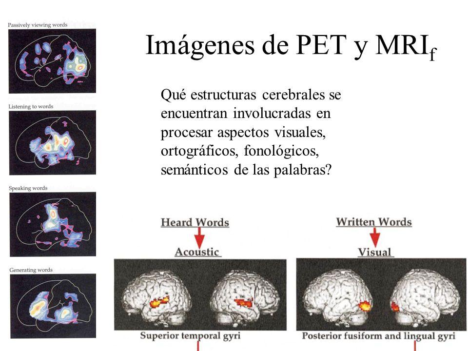 Imágenes de PET y MRIf