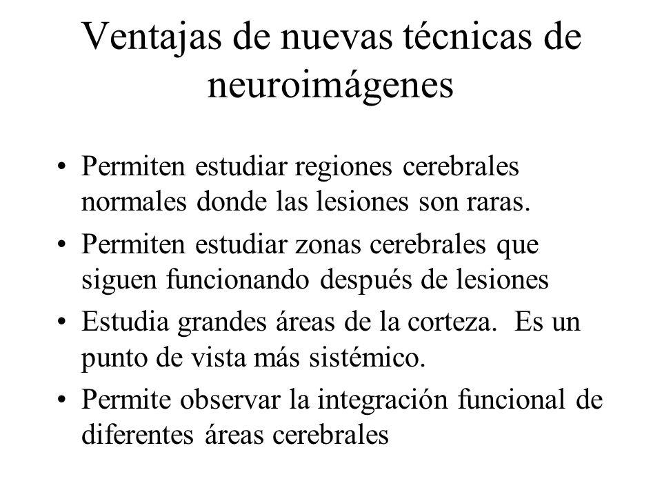 Ventajas de nuevas técnicas de neuroimágenes