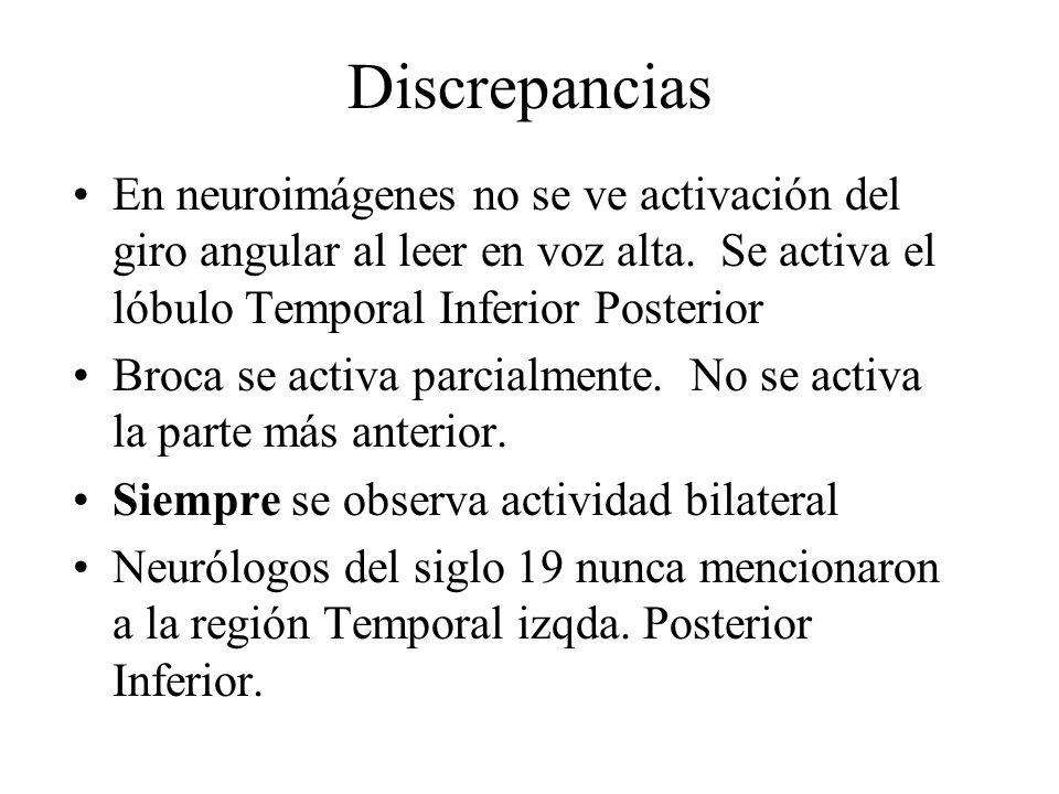 DiscrepanciasEn neuroimágenes no se ve activación del giro angular al leer en voz alta. Se activa el lóbulo Temporal Inferior Posterior.