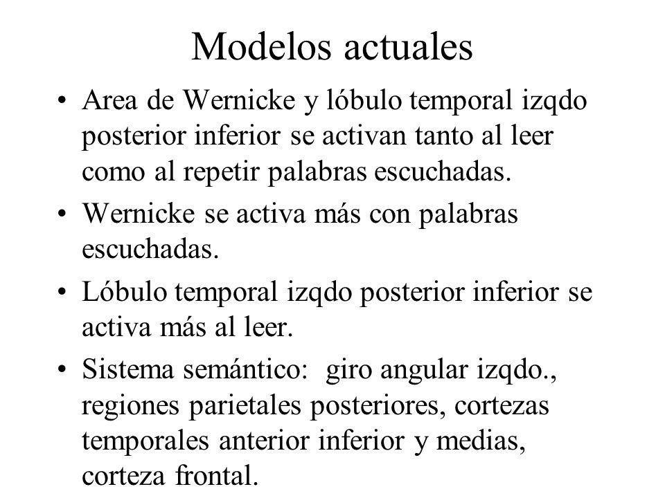 Modelos actuales Area de Wernicke y lóbulo temporal izqdo posterior inferior se activan tanto al leer como al repetir palabras escuchadas.