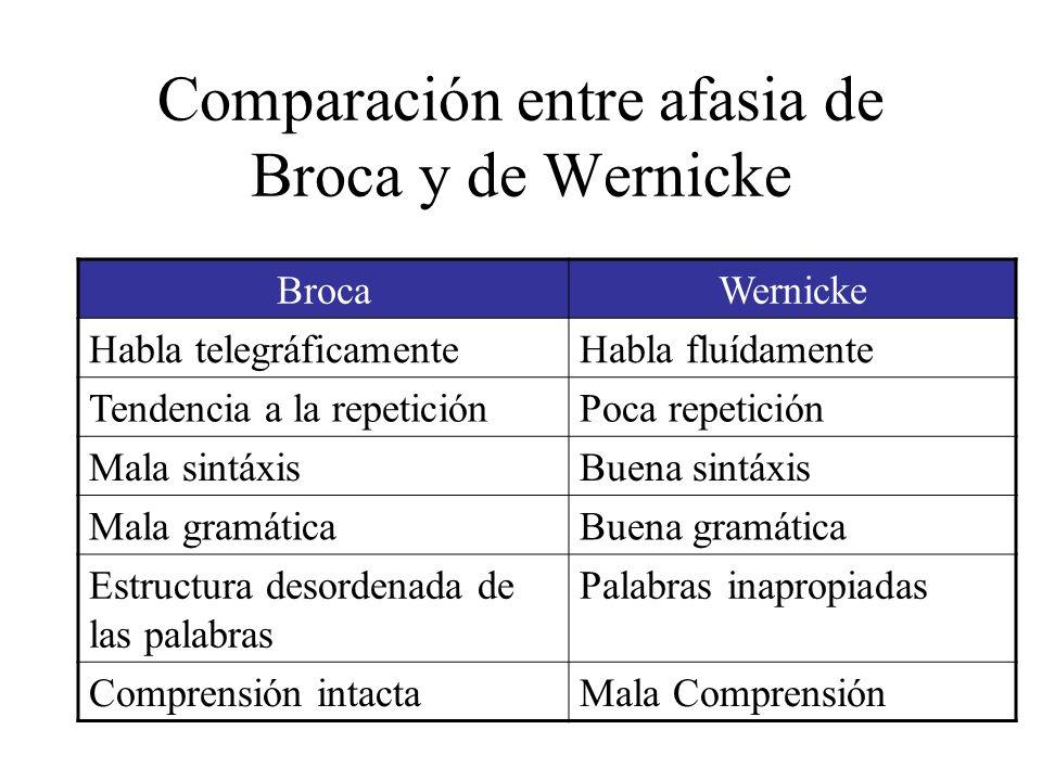 Comparación entre afasia de Broca y de Wernicke