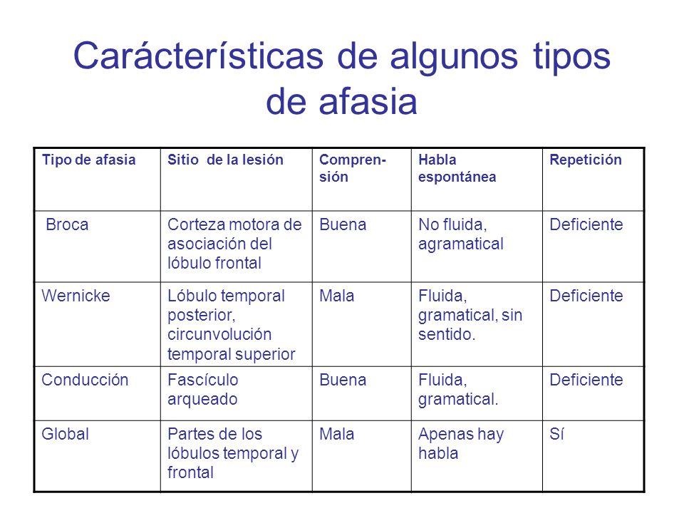 Carácterísticas de algunos tipos de afasia