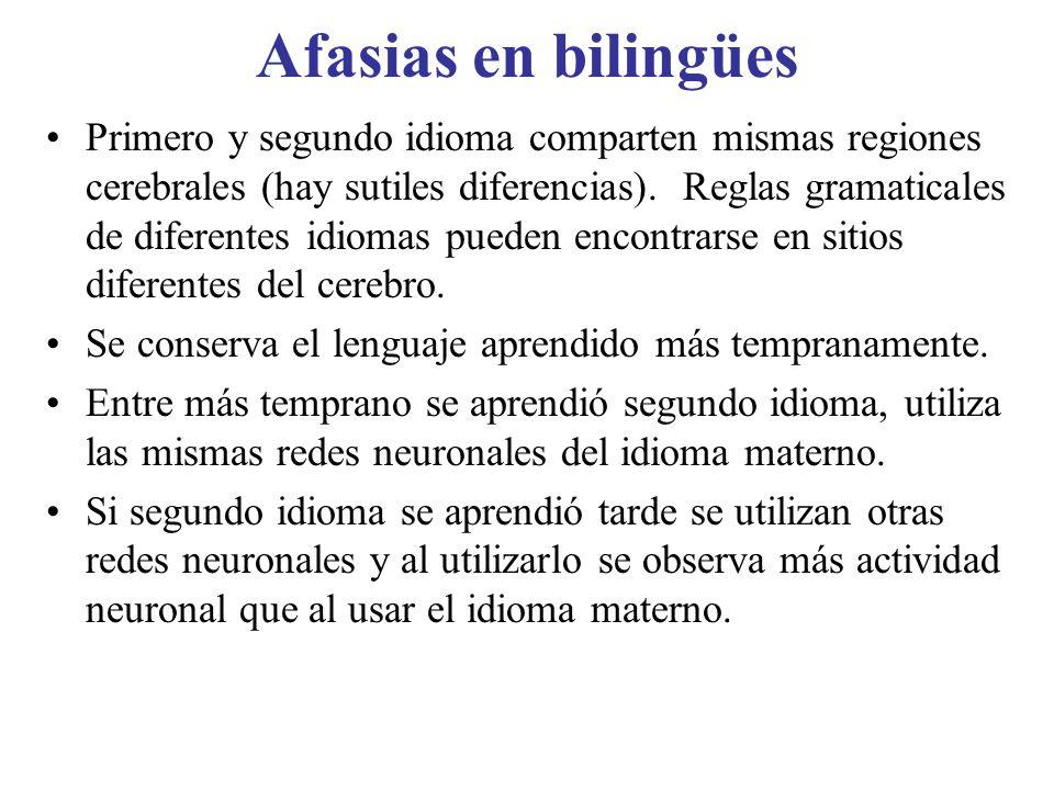 Afasias en bilingües