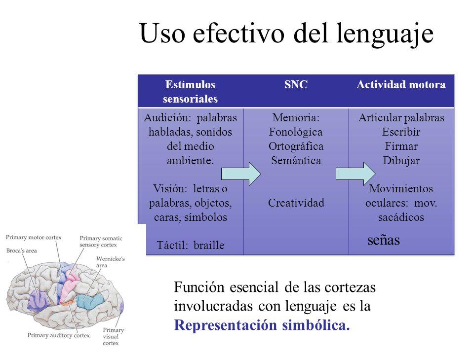 Uso efectivo del lenguaje