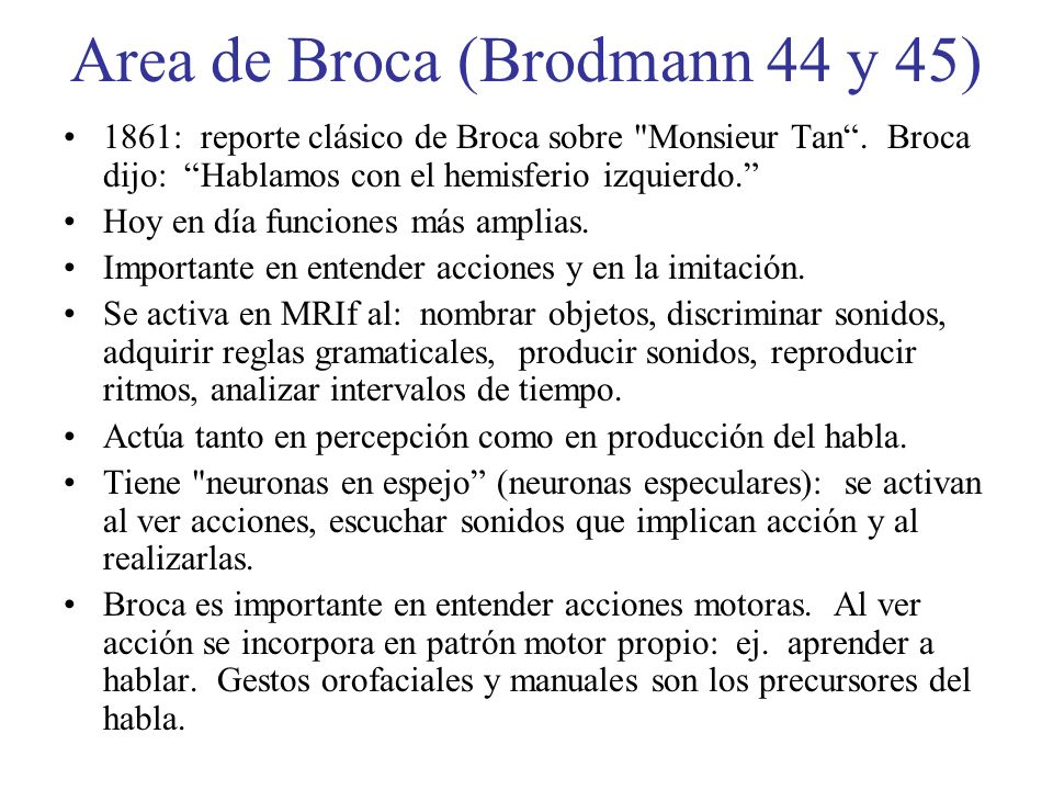 Area de Broca (Brodmann 44 y 45)