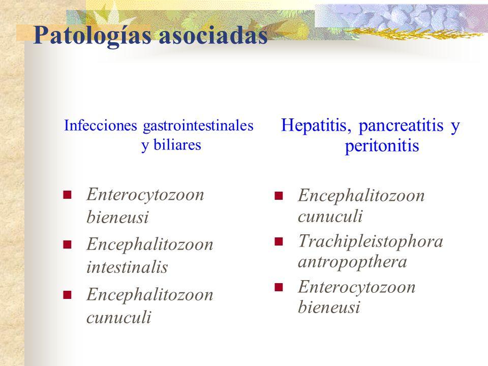 Patologías asociadas Hepatitis, pancreatitis y peritonitis