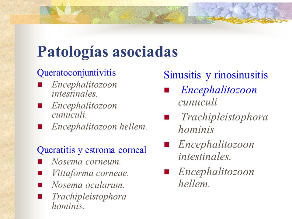 Patologías asociadas Sinusitis y rinosinusitis