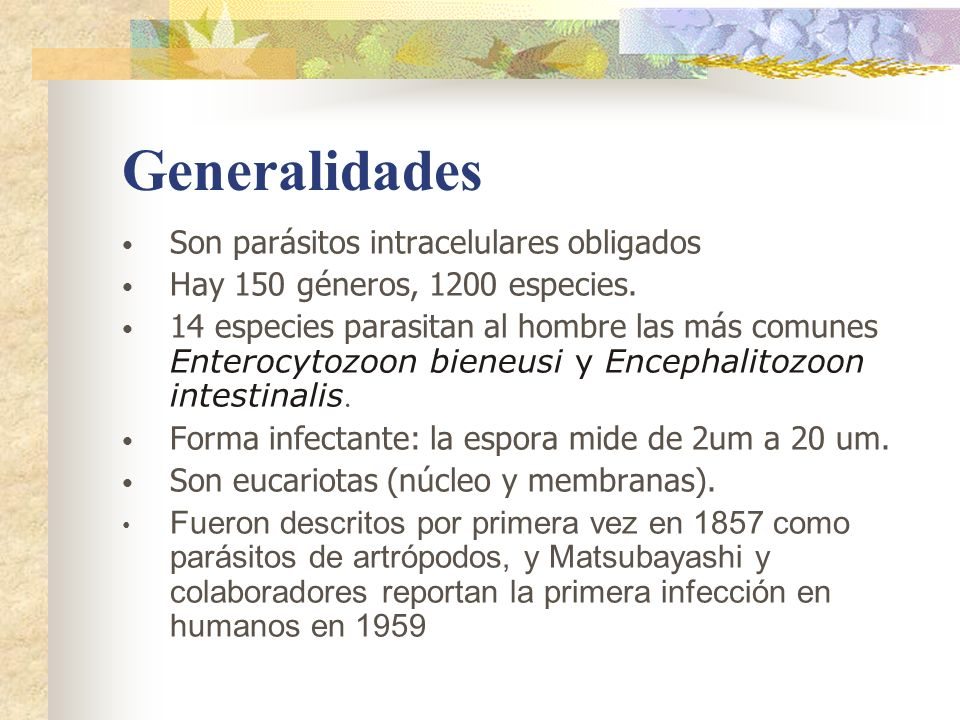 Generalidades Son parásitos intracelulares obligados