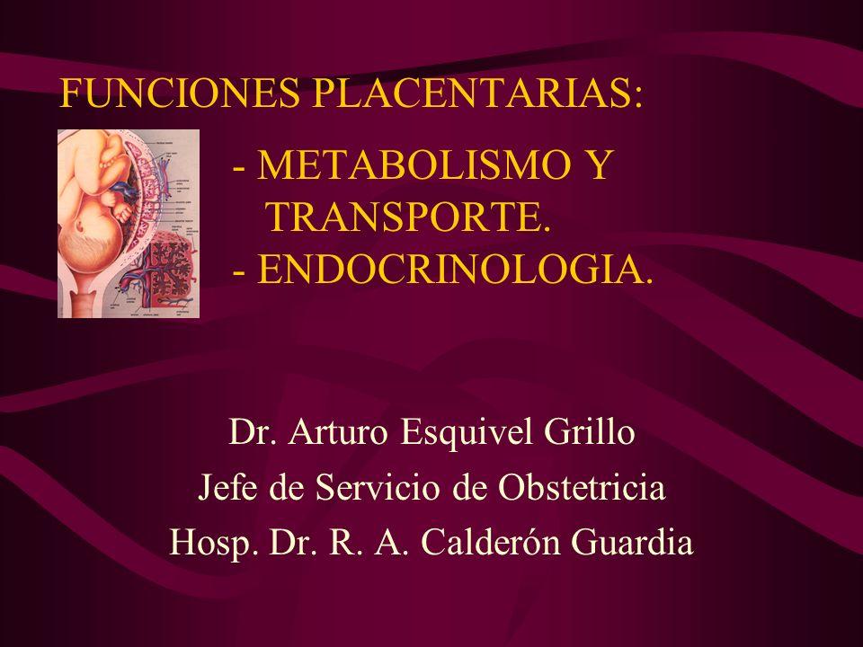 FUNCIONES PLACENTARIAS: - METABOLISMO Y TRANSPORTE. - ENDOCRINOLOGIA.