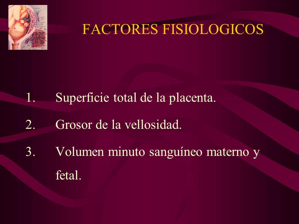 FACTORES FISIOLOGICOS