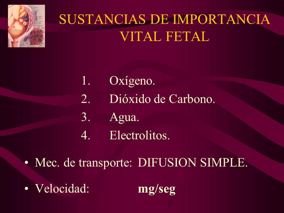 SUSTANCIAS DE IMPORTANCIA VITAL FETAL