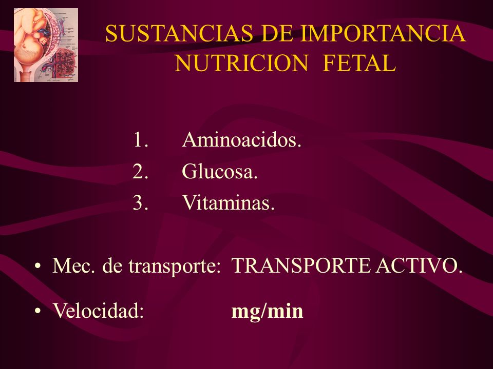 SUSTANCIAS DE IMPORTANCIA NUTRICION FETAL