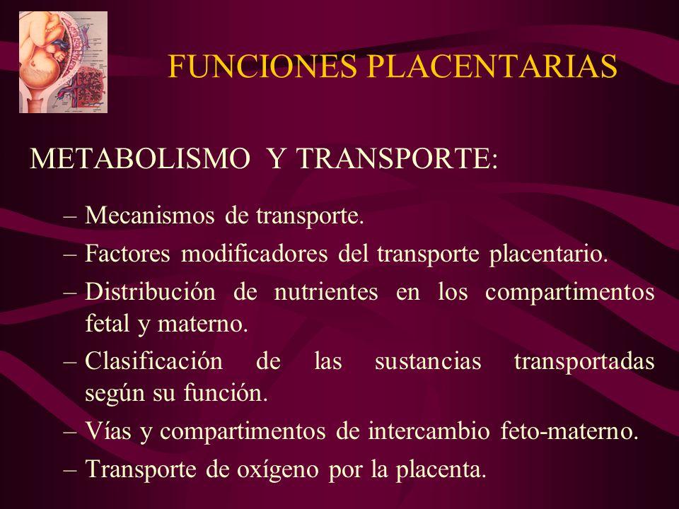 FUNCIONES PLACENTARIAS