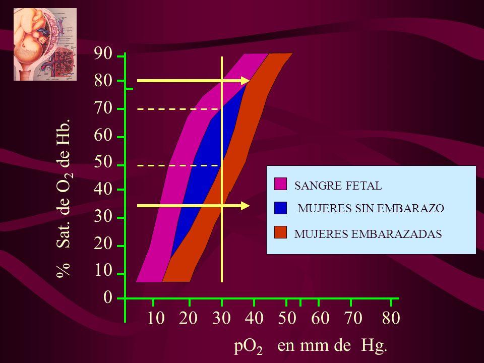 90 80. 70. 60. 50 40. 30. 20. 10. SANGRE FETAL. % Sat. de O2 de Hb. MUJERES SIN EMBARAZO.
