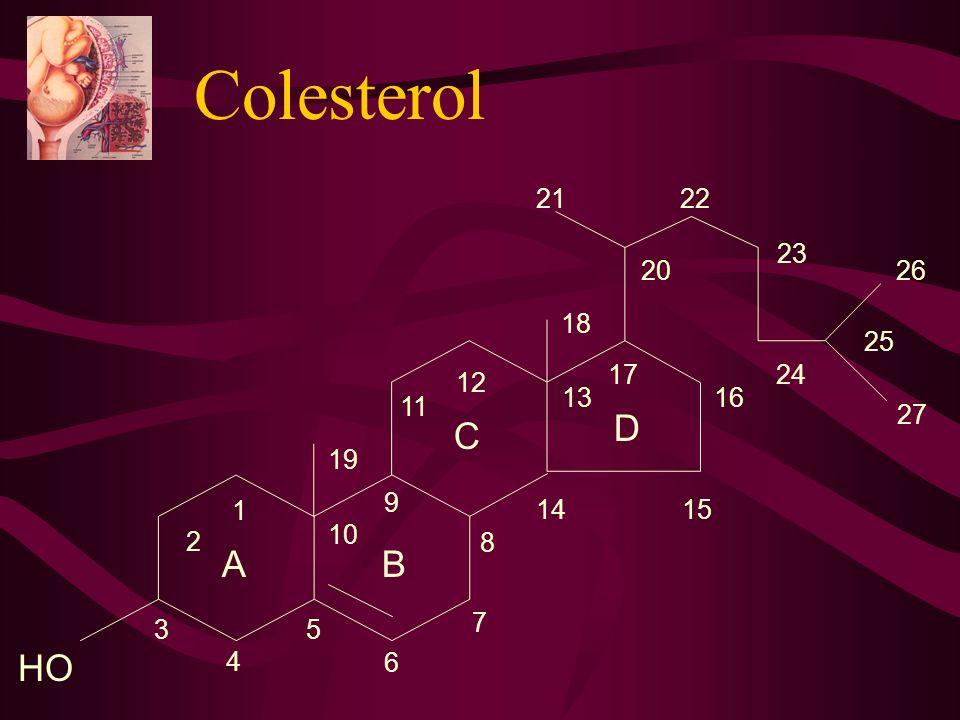 Colesterol 1 2 3 4 5 6 7 8 9 10 11 12 13 14 15 16 17 18 19 20 21 22 23 24 25 26 27 D C A B HO