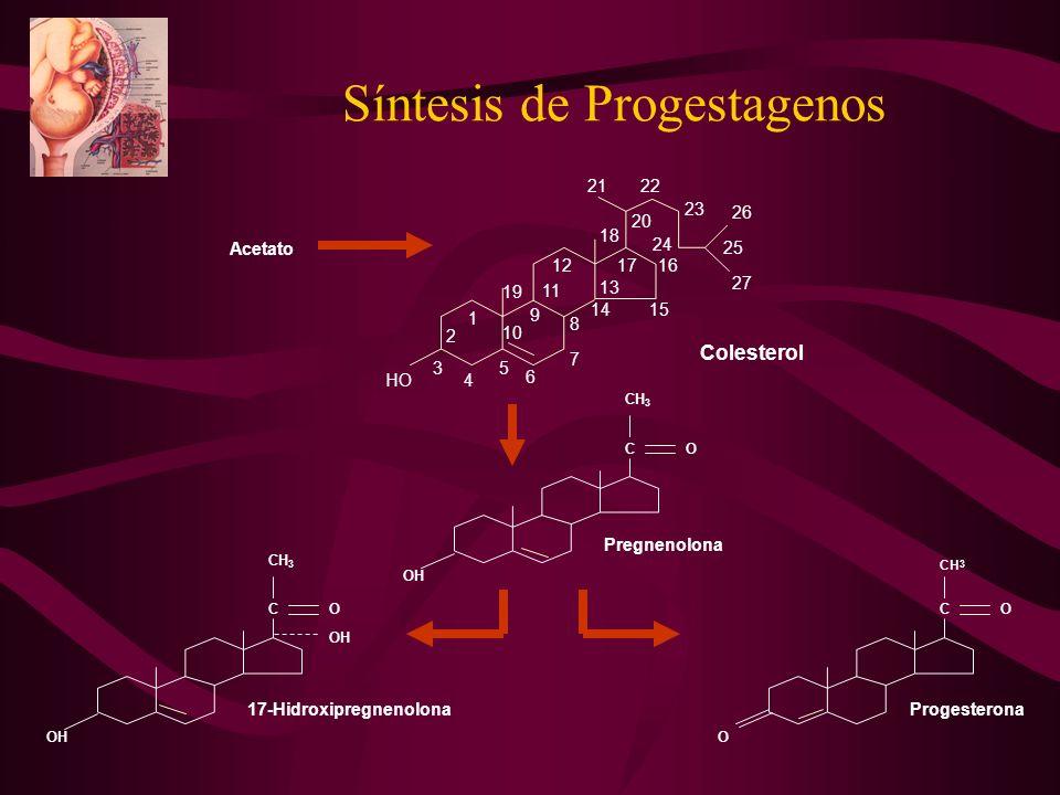 Síntesis de Progestagenos