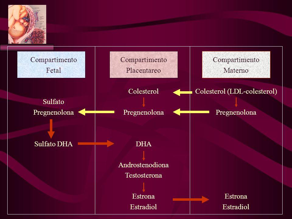 Colesterol (LDL-colesterol)