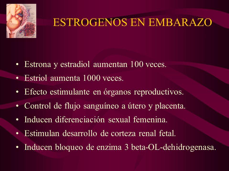 ESTROGENOS EN EMBARAZO