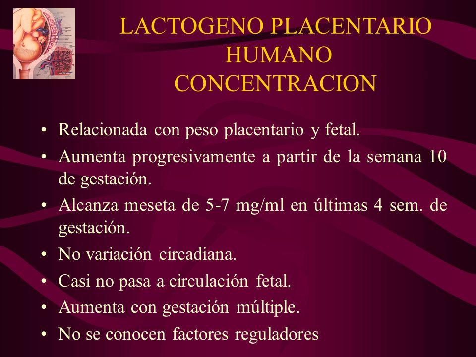 LACTOGENO PLACENTARIO HUMANO CONCENTRACION