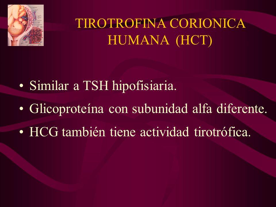 TIROTROFINA CORIONICA HUMANA (HCT)