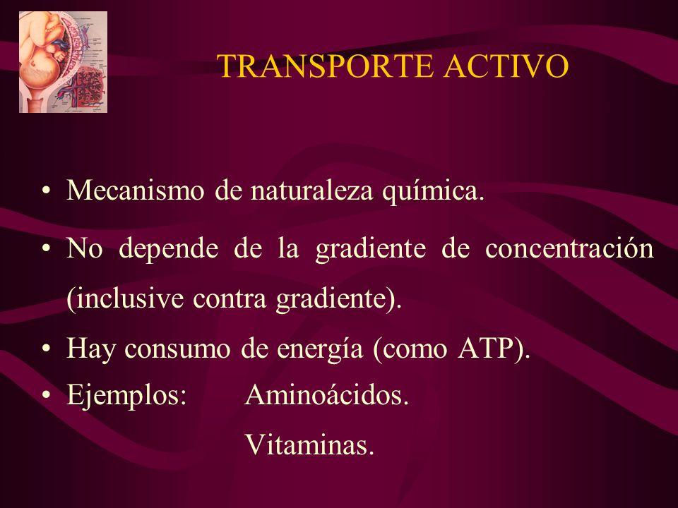 TRANSPORTE ACTIVO Mecanismo de naturaleza química.