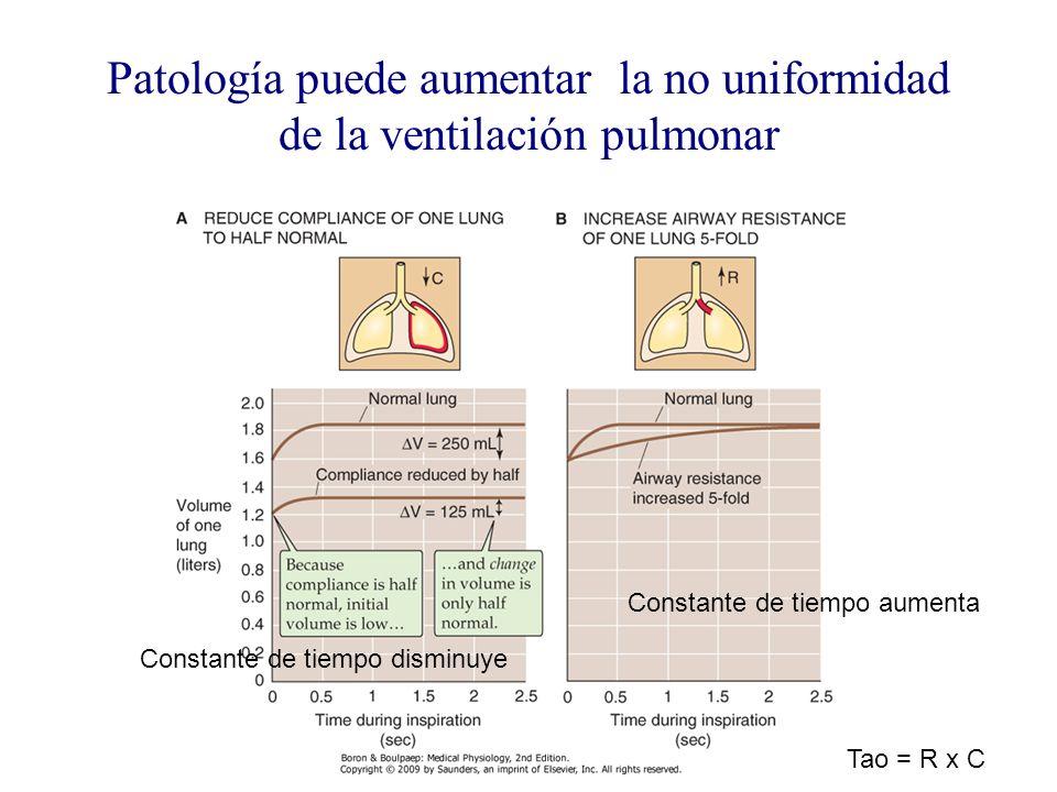 Patología puede aumentar la no uniformidad de la ventilación pulmonar